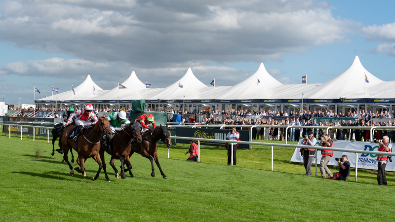 And they're off! Arena Racecourses appoint Expansive FM